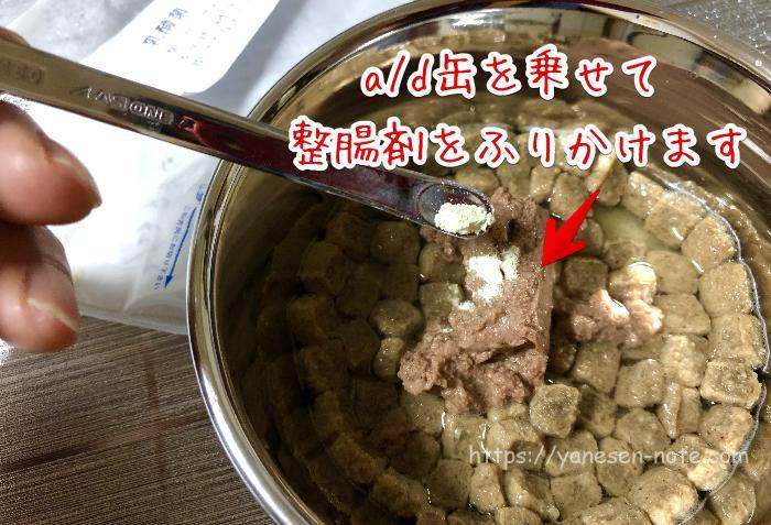 子犬 ドッグフード 整腸剤