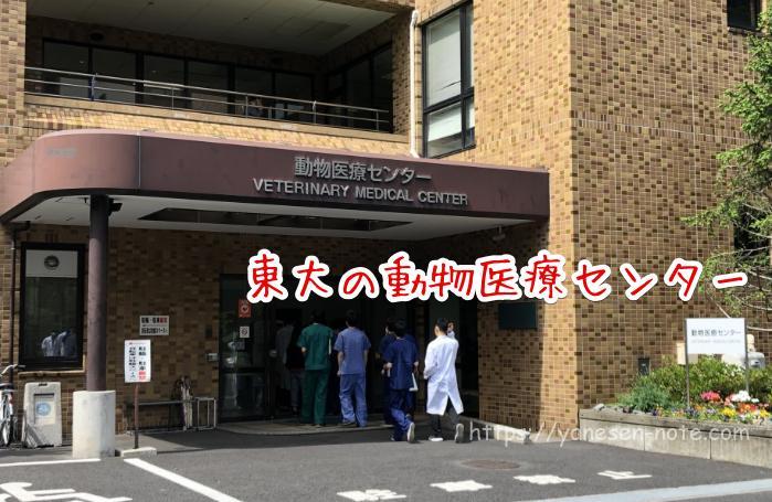 ドッグフード 東京大学