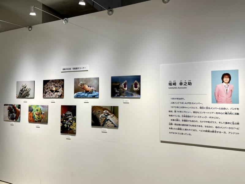 国立科学博物館 大地のハンター展 アルフィー 坂崎