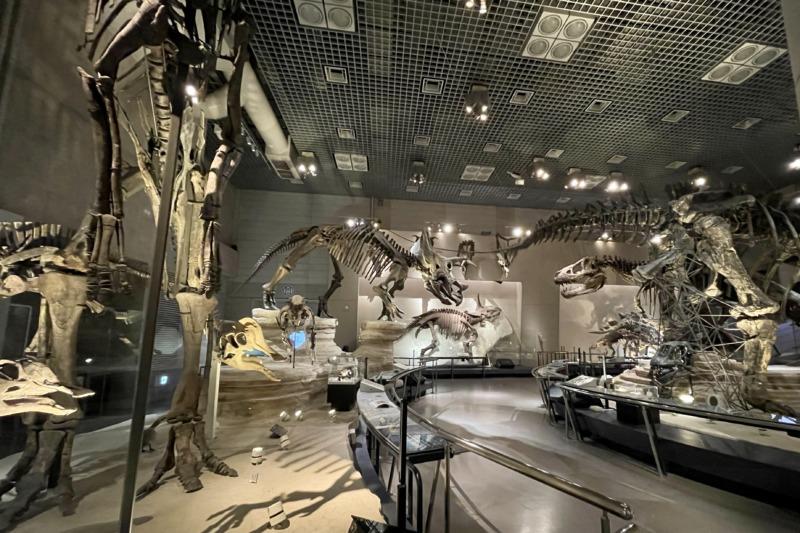 国立科学博物館 地球館 恐竜